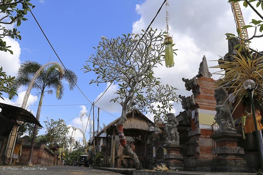 IMG 1728 - Bali